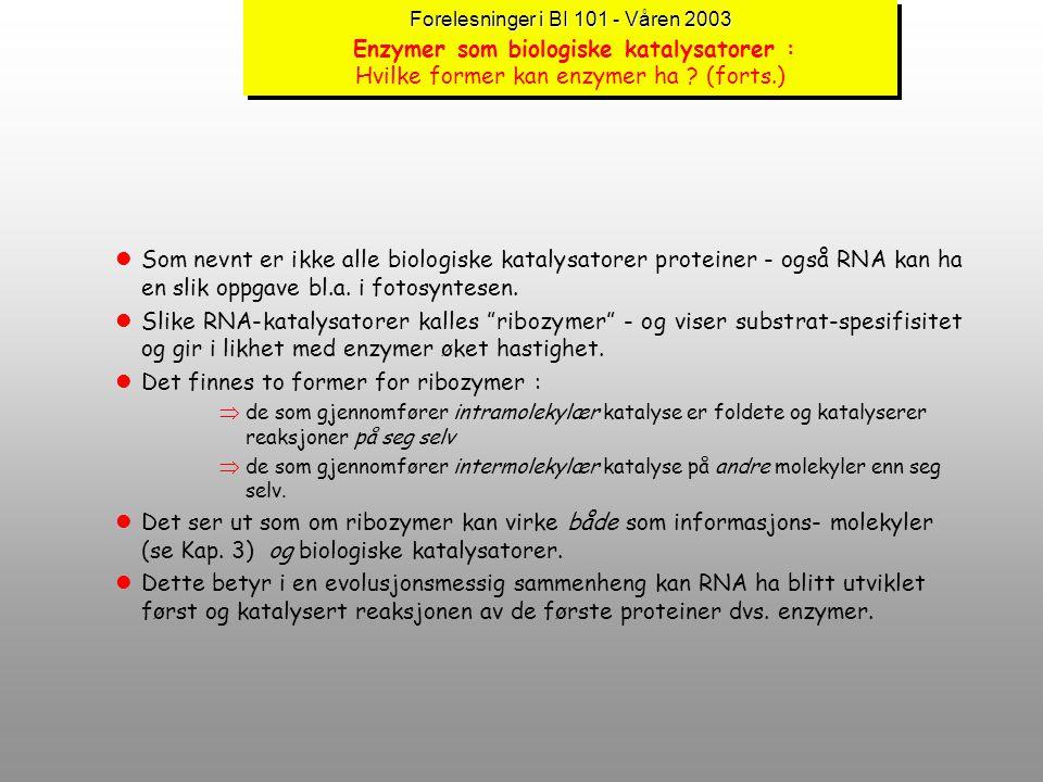 Forelesninger i BI 101 - Våren 2003 Forelesninger i BI 101 - Våren 2003 Enzymer som biologiske katalysatorer : Hvilke former kan enzymer ha ? lEnzymer