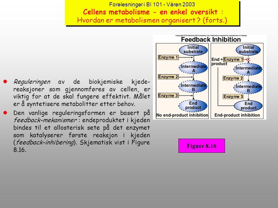 Forelesninger i BI 101 - Våren 2003 Forelesninger i BI 101 - Våren 2003 Cellens metabolisme - en enkel oversikt : Hvordan er metabolismen organisert ?