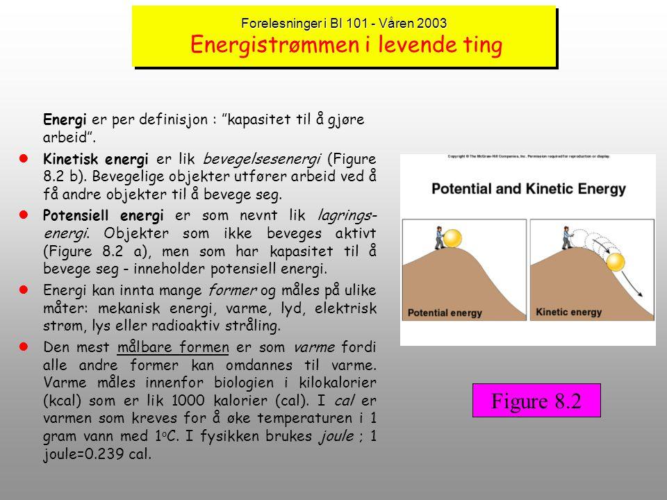 Forelesninger BI 101 - vår 2003 METABOLISME,ENERGI OG TERMODYNAMIKK lAlle levende organismer mottar energi fra omgivelsene - ingen levende organismer