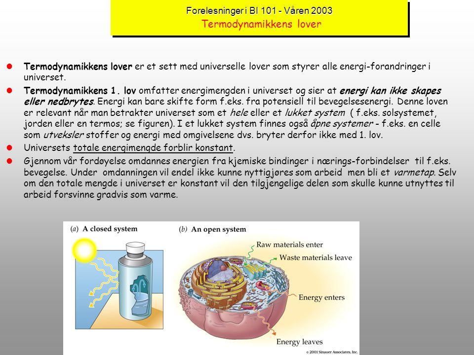 Forelesninger i BI 101 - Våren 2003 Forelesninger i BI 101 - Våren 2003 Energistrømmen i levende ting (forts.) : Red-oks reaksjoner lEnergi strømmer i