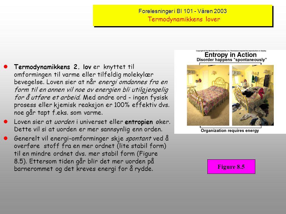 Forelesninger i BI 101 - Våren 2003 Forelesninger i BI 101 - Våren 2003 Termodynamikkens lover lTermodynamikkens lover er et sett med universelle love