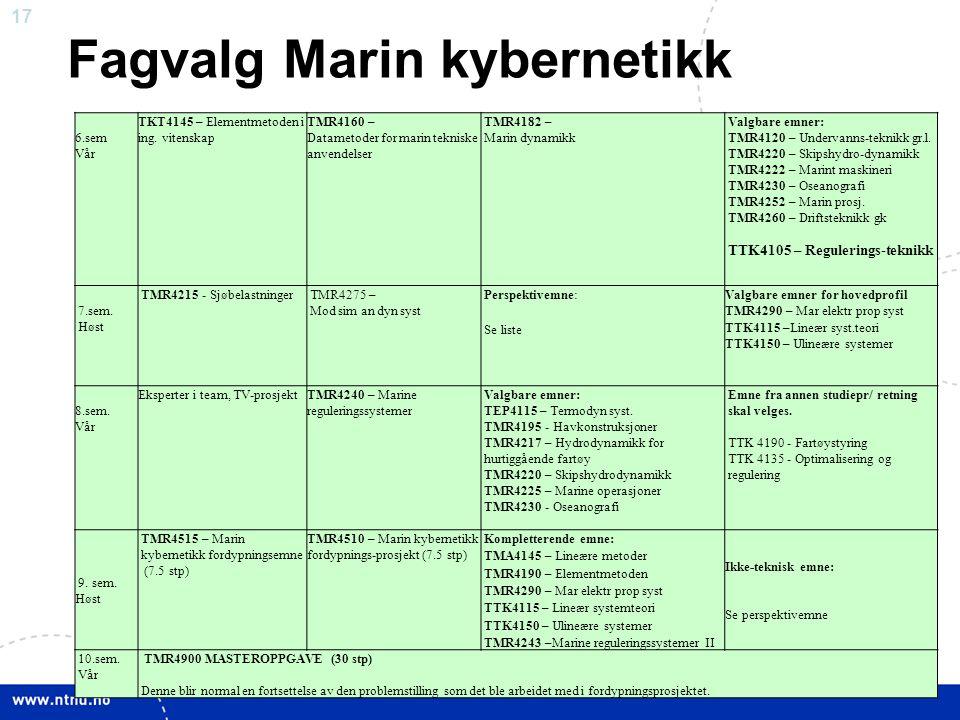 17 Fagvalg Marin kybernetikk 6.sem Vår TKT4145 – Elementmetoden i ing. vitenskap TMR4160 – Datametoder for marin tekniske anvendelser TMR4182 – Marin