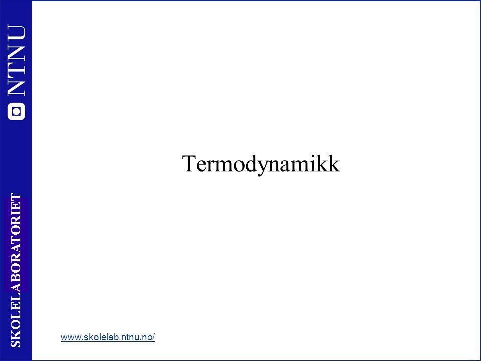 21 SKOLELABORATORIET Termodynamikk www.skolelab.ntnu.no/