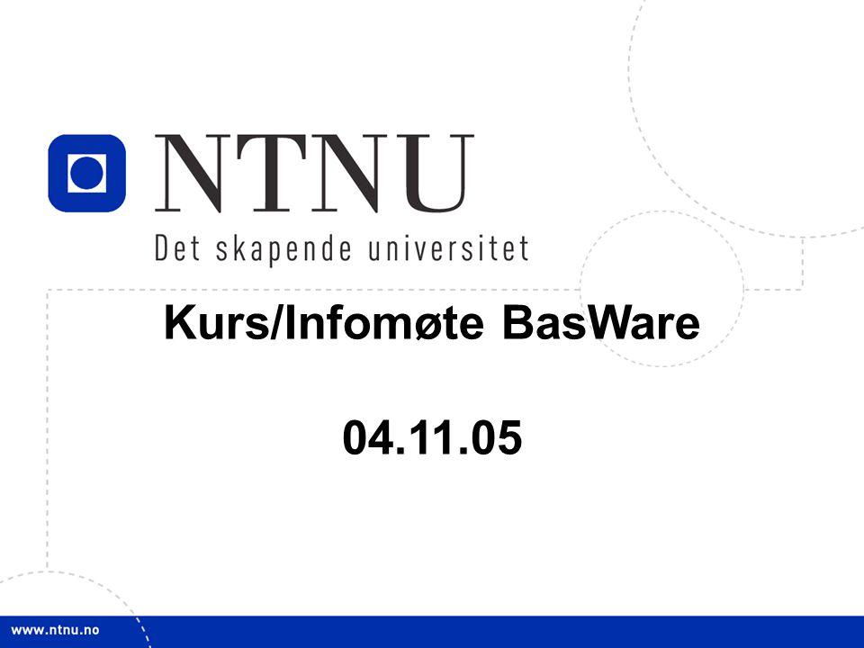 1 Kurs/Infomøte BasWare 04.11.05