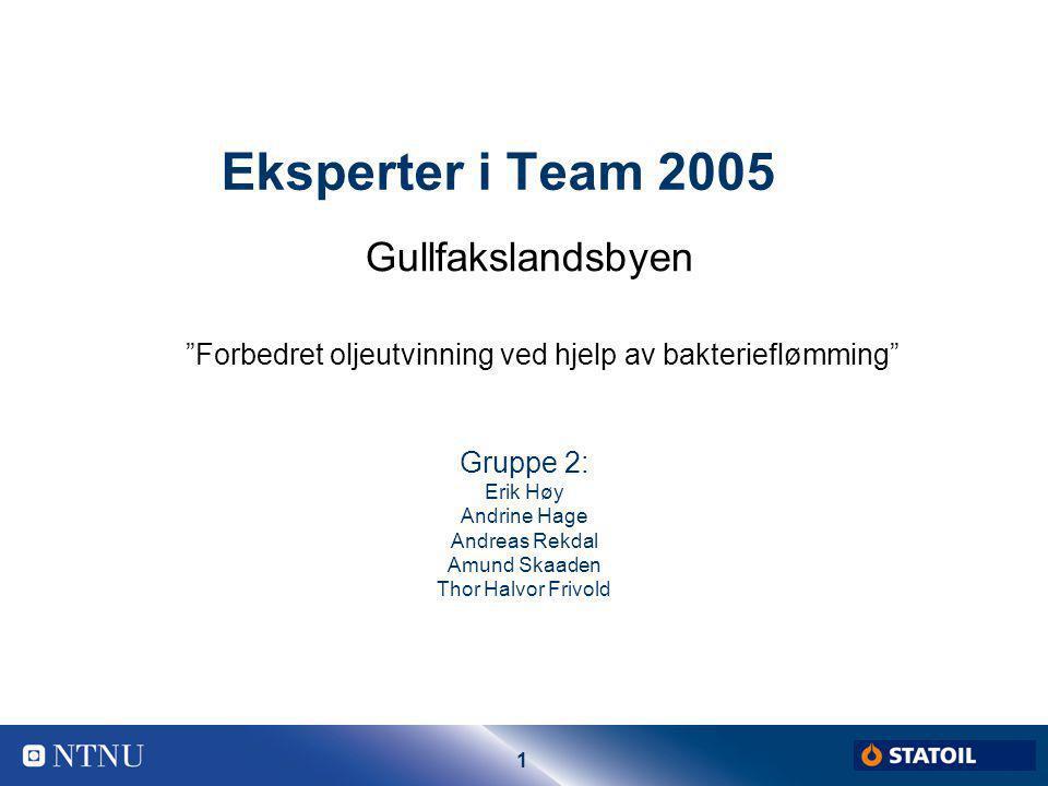 """1 Eksperter i Team 2005 Gruppe 2: Erik Høy Andrine Hage Andreas Rekdal Amund Skaaden Thor Halvor Frivold Gullfakslandsbyen """"Forbedret oljeutvinning ve"""
