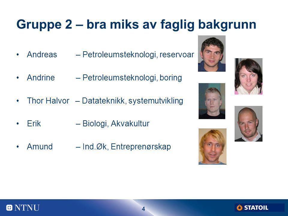 5 Eksterne omgivelser Fagstab IPT Statoil De andre Gullfaksgruppene
