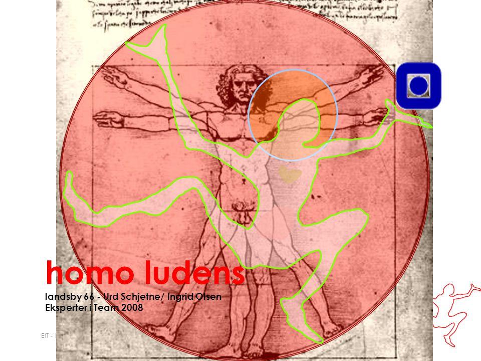 EIT - landsby 66 homo ludens Homo Ludens er en internasjonal organisasjon som fremmer lekenhet innenfor alle områder.