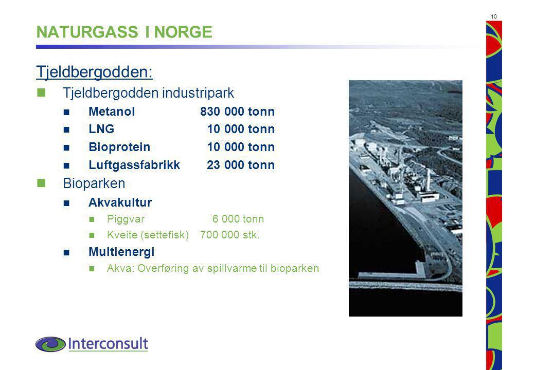 10 NATURGASS I NORGE Tjeldbergodden: Tjeldbergodden industripark Metanol830 000 tonn LNG 10 000 tonn Bioprotein 10 000 tonn Luftgassfabrikk 23 000 tonn Bioparken Akvakultur Piggvar 6 000 tonn Kveite (settefisk)700 000 stk.