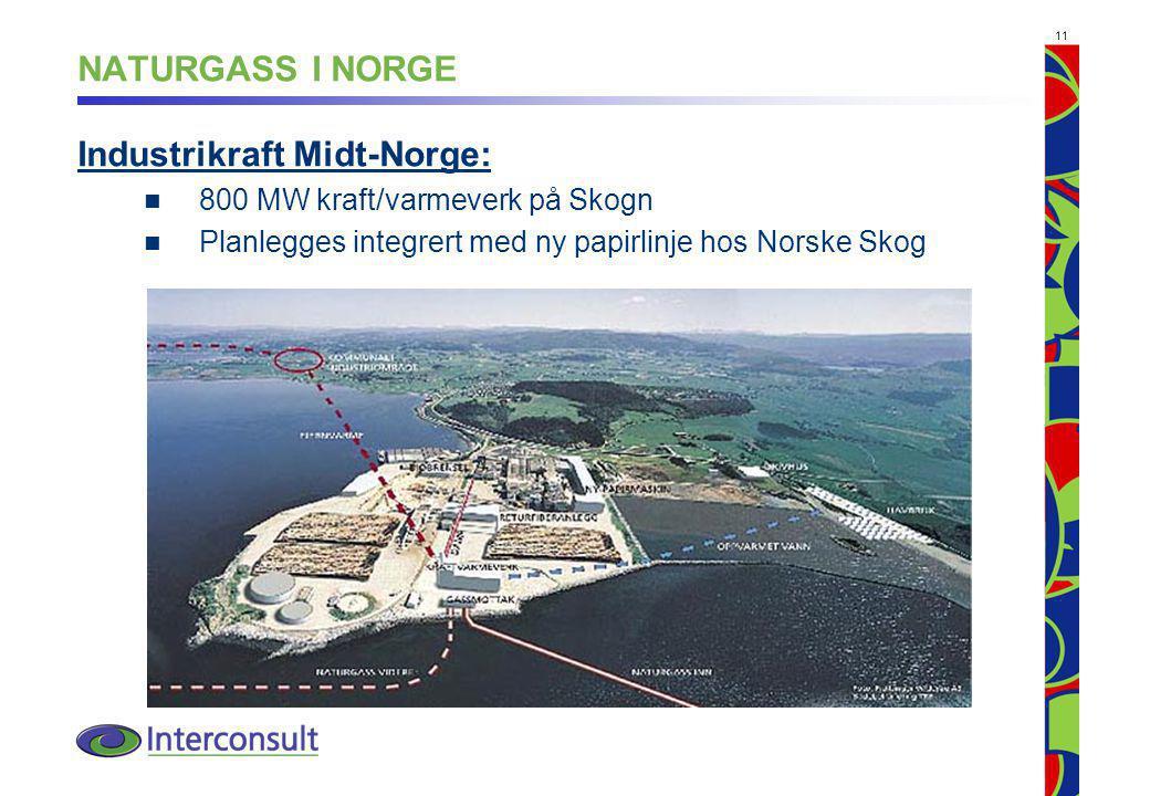 11 NATURGASS I NORGE Industrikraft Midt-Norge: 800 MW kraft/varmeverk på Skogn Planlegges integrert med ny papirlinje hos Norske Skog