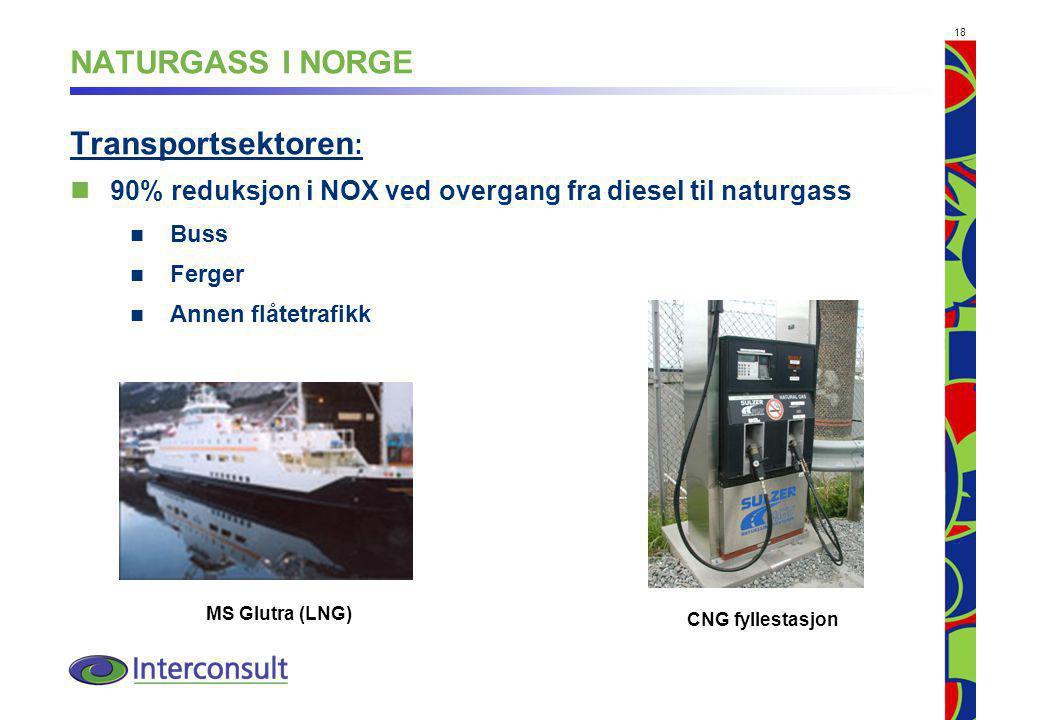18 NATURGASS I NORGE Transportsektoren : 90% reduksjon i NOX ved overgang fra diesel til naturgass Buss Ferger Annen flåtetrafikk MS Glutra (LNG) CNG fyllestasjon