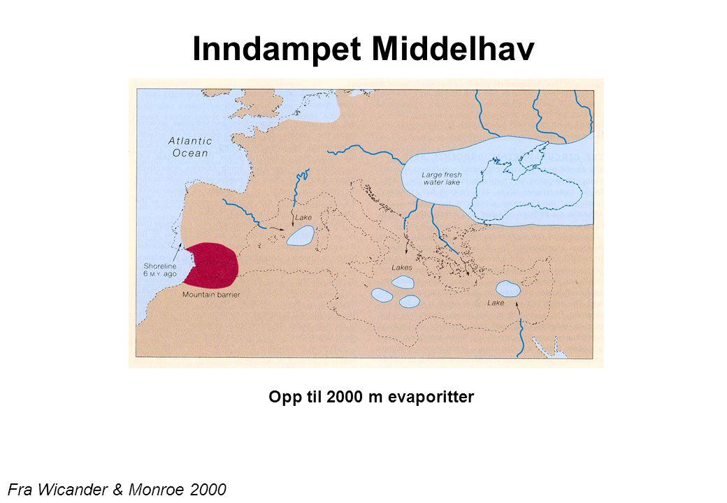 Fra Wicander & Monroe 2000 Inndampet Middelhav Opp til 2000 m evaporitter
