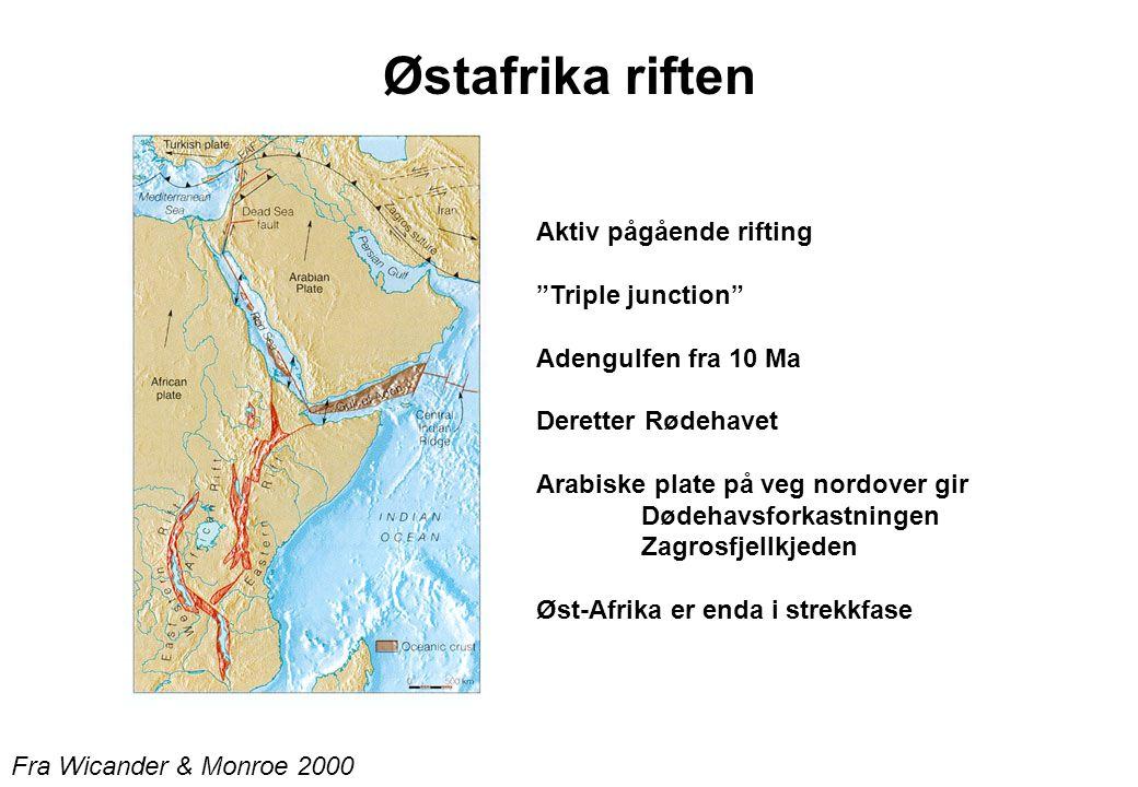 Fra Wicander & Monroe 2000 Østafrika riften Aktiv pågående rifting Triple junction Adengulfen fra 10 Ma Deretter Rødehavet Arabiske plate på veg nordover gir Dødehavsforkastningen Zagrosfjellkjeden Øst-Afrika er enda i strekkfase