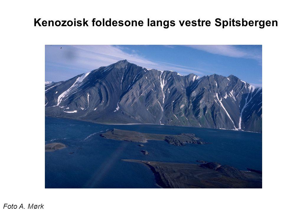 Foto A. Mørk Kenozoisk foldesone langs vestre Spitsbergen