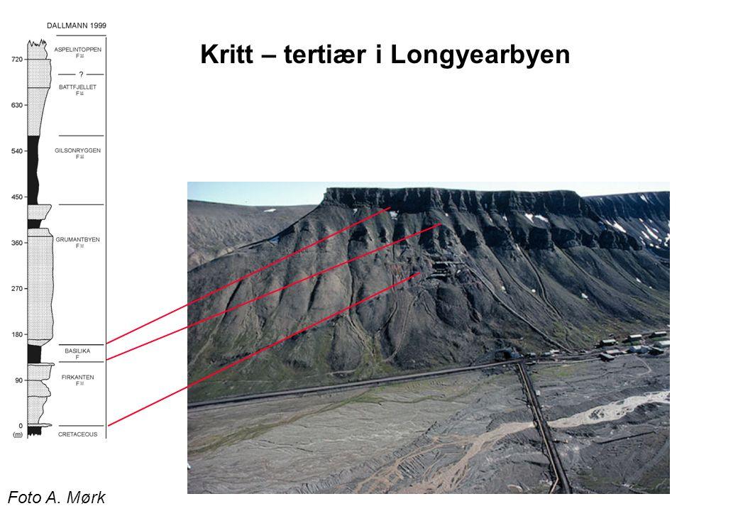 Foto A. Mørk Kritt – tertiær i Longyearbyen