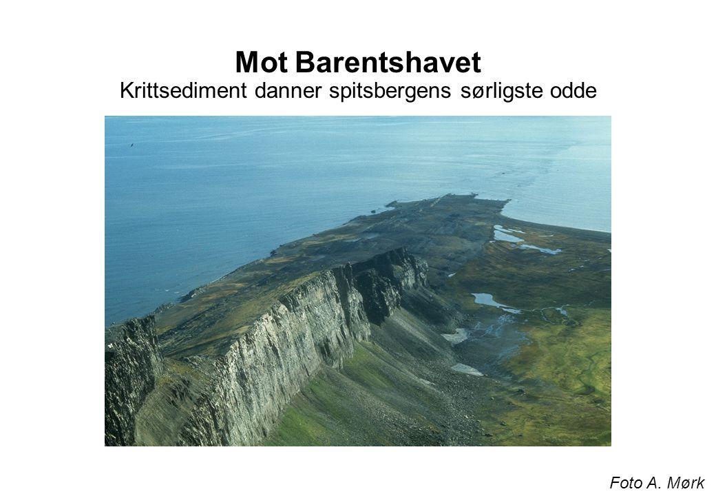 Mot Barentshavet Krittsediment danner spitsbergens sørligste odde