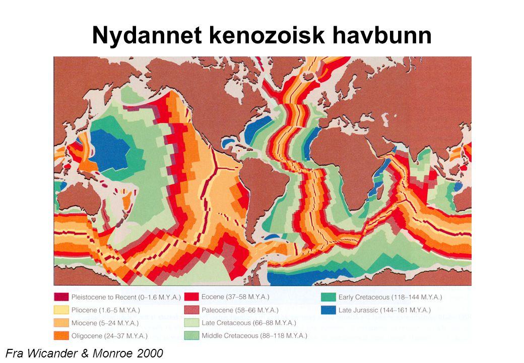 karbon-perm Tykk kenozoisk sediment vifte fra kontinentalsokkelen ned mot dyphavet
