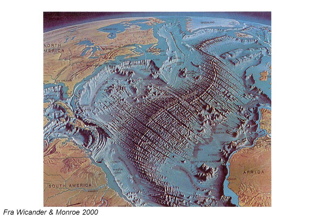 Kenozoisk orogen aktivitet Alpine – Himalayabeltet Sirkum Stillehavsbeltet