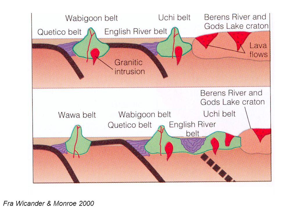 18 Senproterozoiske superkontinenter Fra Wicander & Monroe 2000 Laurentia Gondwana Rodinia