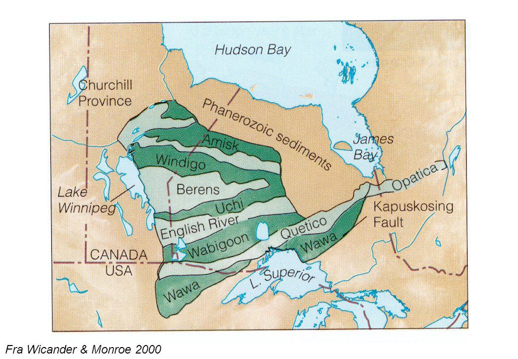 19 Senproterozoiske glasiasjoner Fra Wicander & Monroe 2000