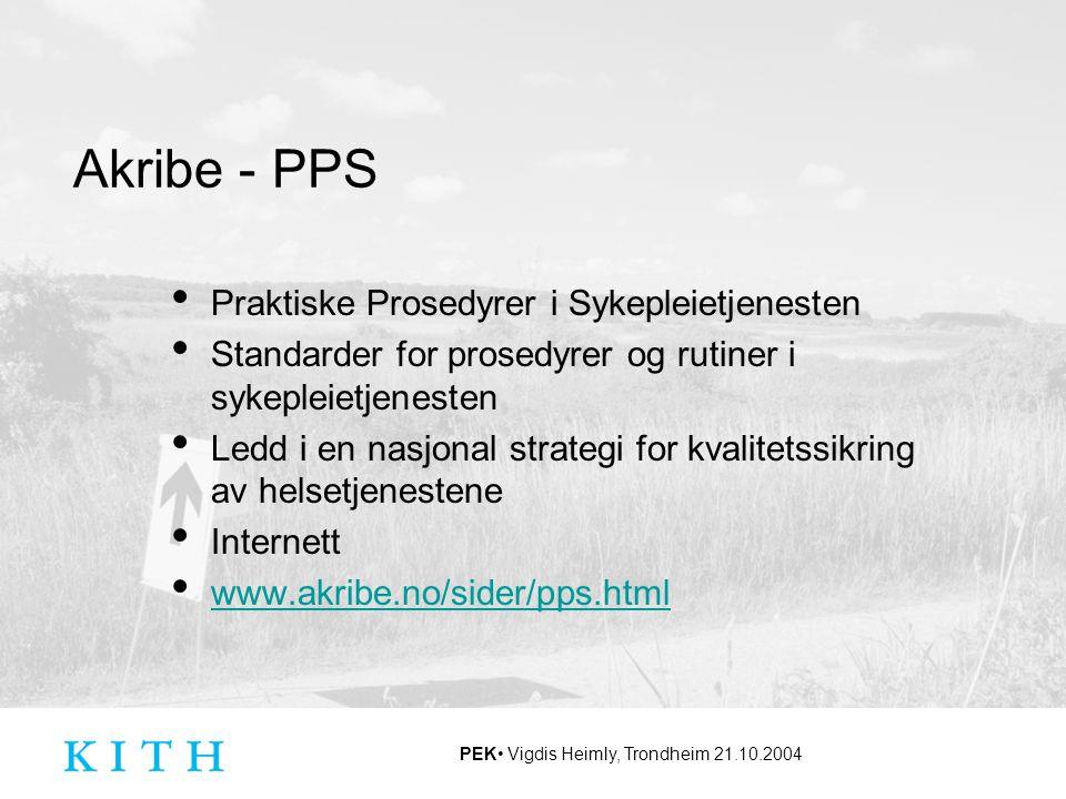 Akribe - PPS Praktiske Prosedyrer i Sykepleietjenesten Standarder for prosedyrer og rutiner i sykepleietjenesten Ledd i en nasjonal strategi for kvali