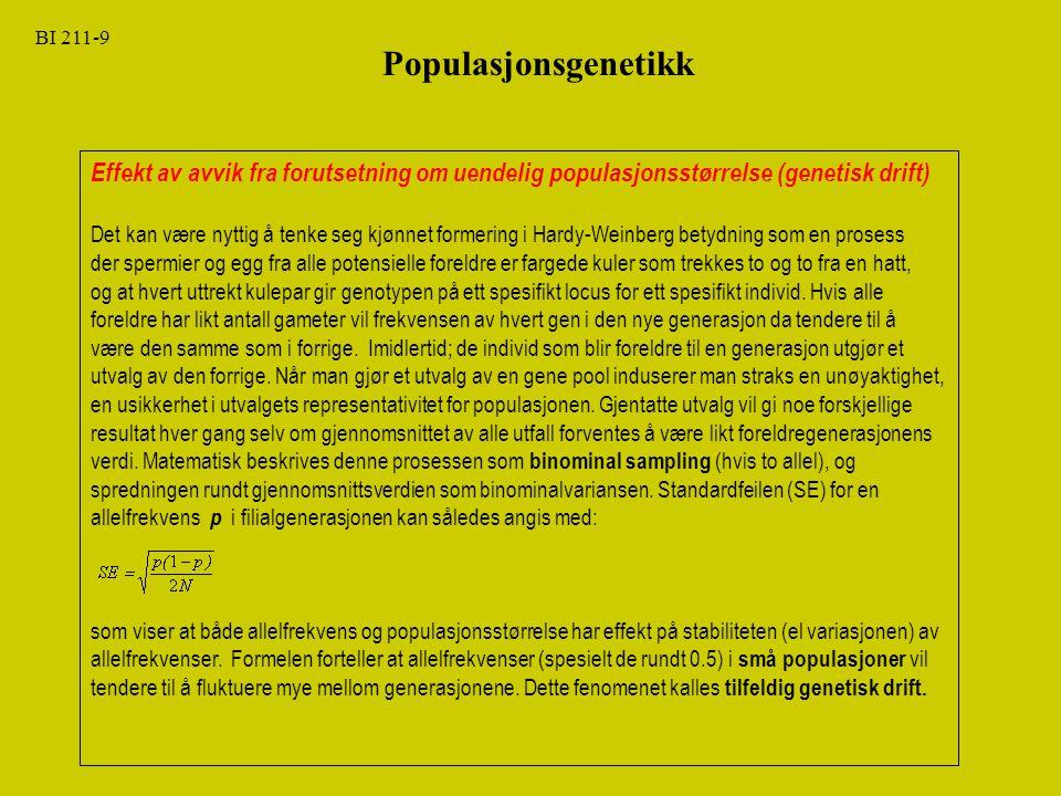 BI 211-20 Populasjonsgenetikk Kap.