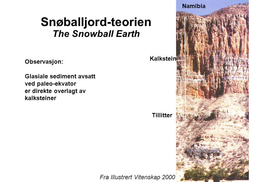 12 Snøballjord-teorien The Snowball Earth Namibia Kalkstein Tillitter Observasjon: Glasiale sediment avsatt ved paleo-ekvator er direkte overlagt av kalksteiner Fra Illustrert Vitenskap 2000