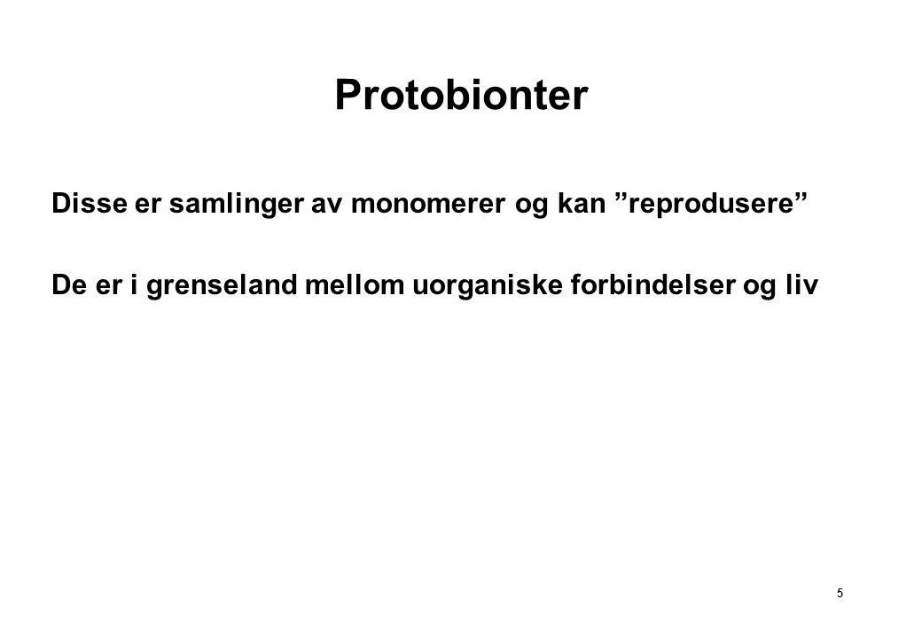 5 Protobionter Disse er samlinger av monomerer og kan reprodusere De er i grenseland mellom uorganiske forbindelser og liv