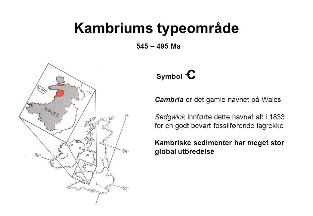 Kambriums typeområde 545 – 495 Ma Cambria er det gamle navnet på Wales Sedgwick innførte dette navnet alt i 1833 for en godt bevart fossilførende lagr