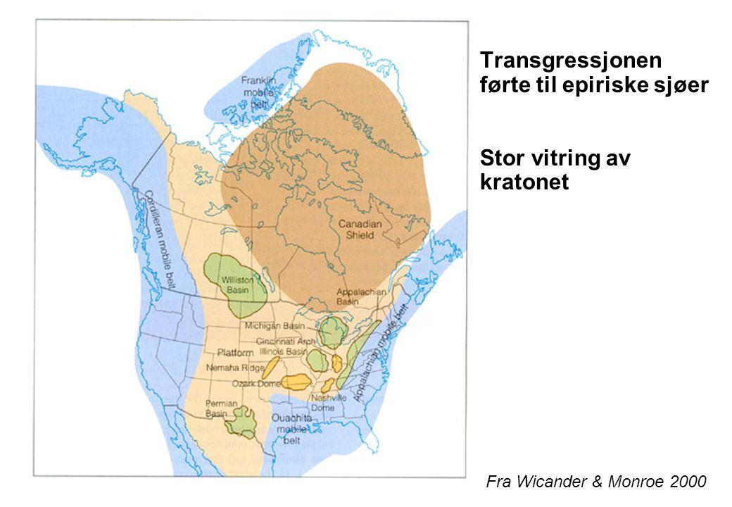 Transgressjonen førte til epiriske sjøer Stor vitring av kratonet Fra Wicander & Monroe 2000