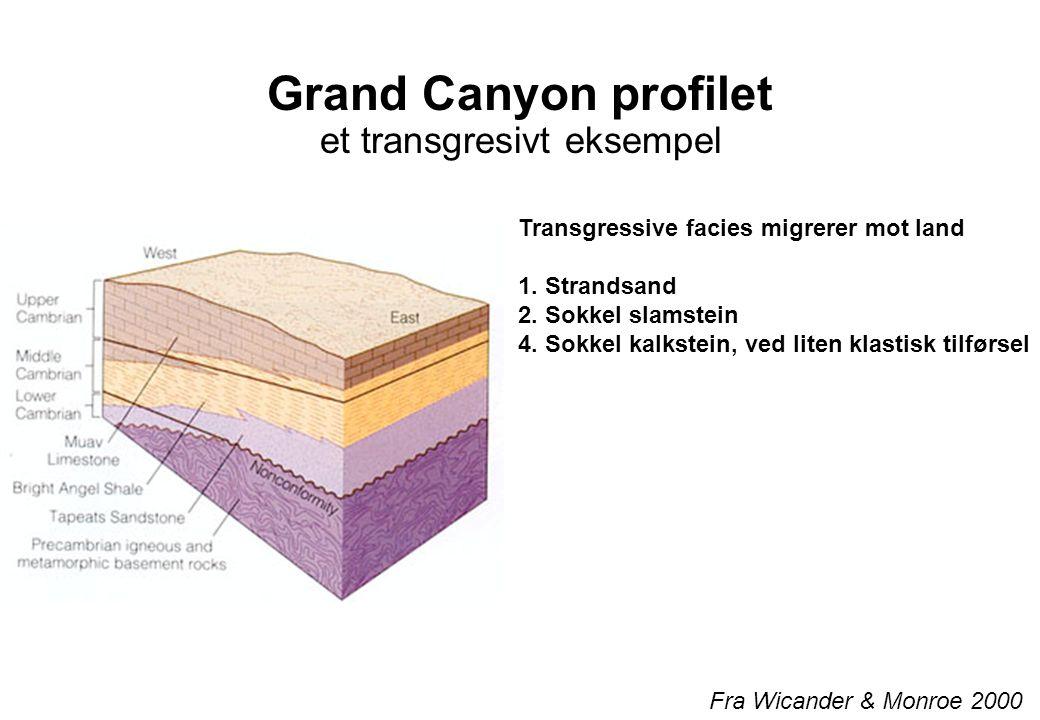 Grand Canyon profilet et transgresivt eksempel Fra Wicander & Monroe 2000 Transgressive facies migrerer mot land 1. Strandsand 2. Sokkel slamstein 4.