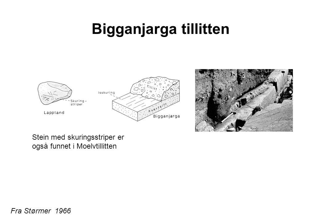 Bigganjarga tillitten Fra Størmer 1966 Stein med skuringsstriper er også funnet i Moelvtillitten