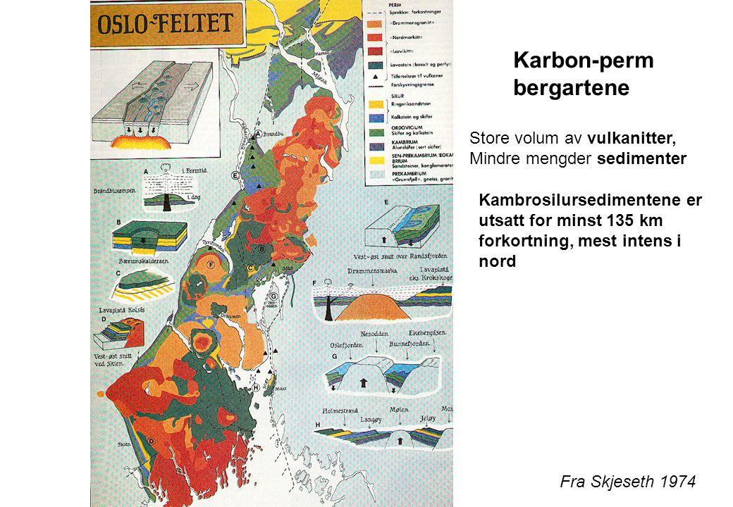 Fra Skjeseth 1974 Karbon-perm bergartene Store volum av vulkanitter, Mindre mengder sedimenter Kambrosilursedimentene er utsatt for minst 135 km forko
