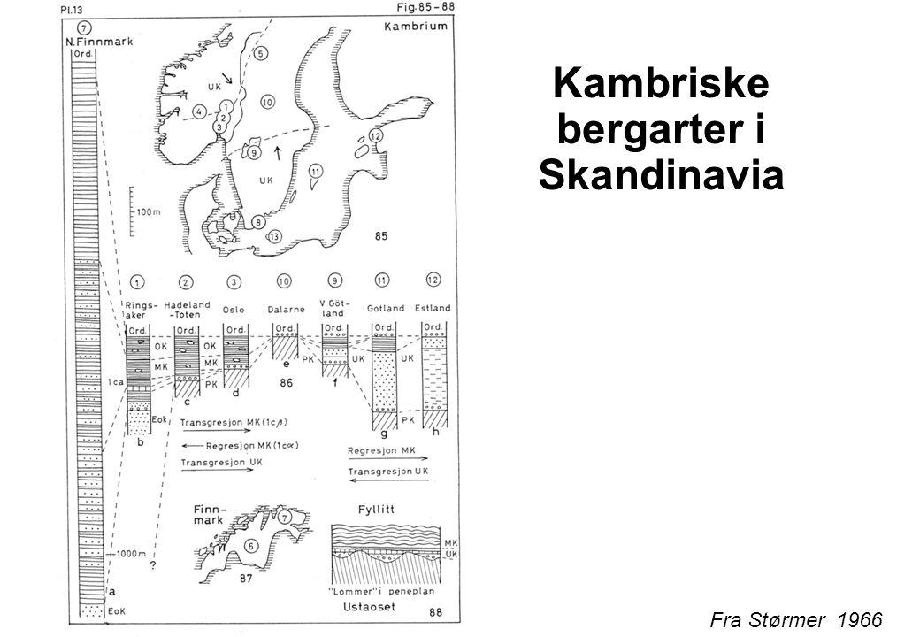 Fra Størmer 1966 Kambriske bergarter i Skandinavia