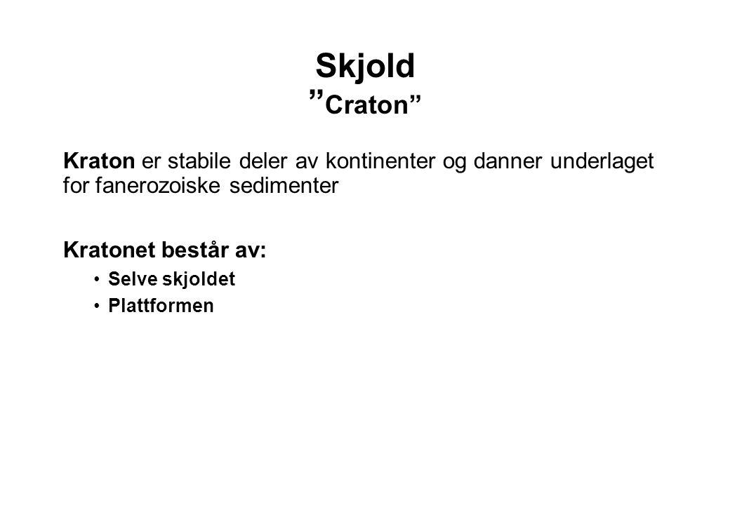 """Skjold """" Craton"""" Kraton er stabile deler av kontinenter og danner underlaget for fanerozoiske sedimenter Kratonet består av: Selve skjoldet Plattforme"""