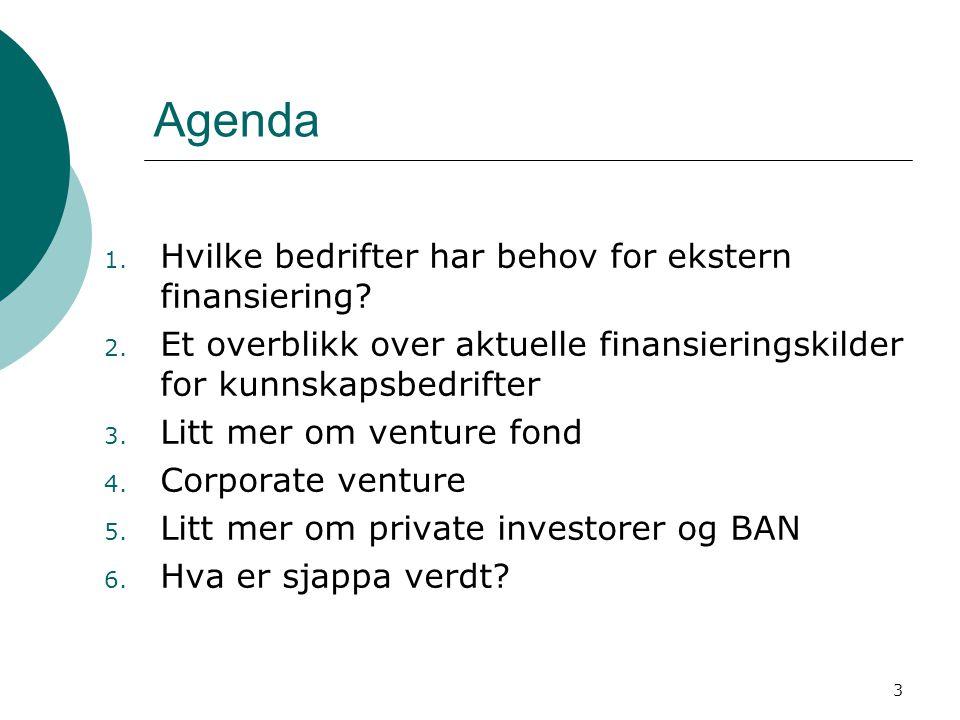 3 Agenda 1. Hvilke bedrifter har behov for ekstern finansiering? 2. Et overblikk over aktuelle finansieringskilder for kunnskapsbedrifter 3. Litt mer