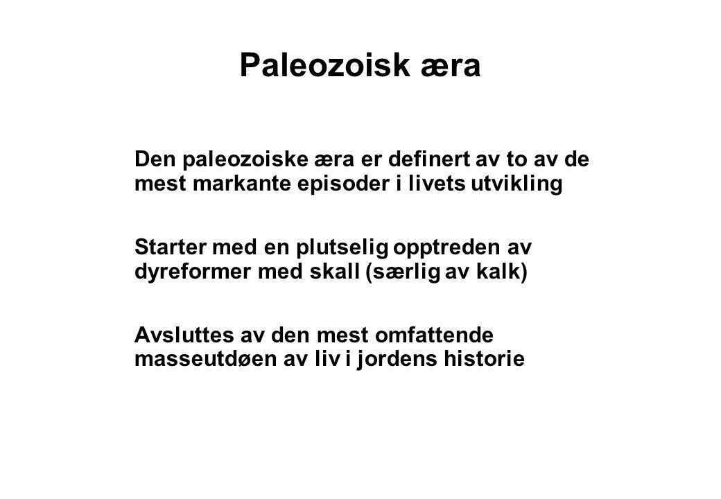 Paleozoisk æra Den paleozoiske æra er definert av to av de mest markante episoder i livets utvikling Starter med en plutselig opptreden av dyreformer med skall (særlig av kalk) Avsluttes av den mest omfattende masseutdøen av liv i jordens historie