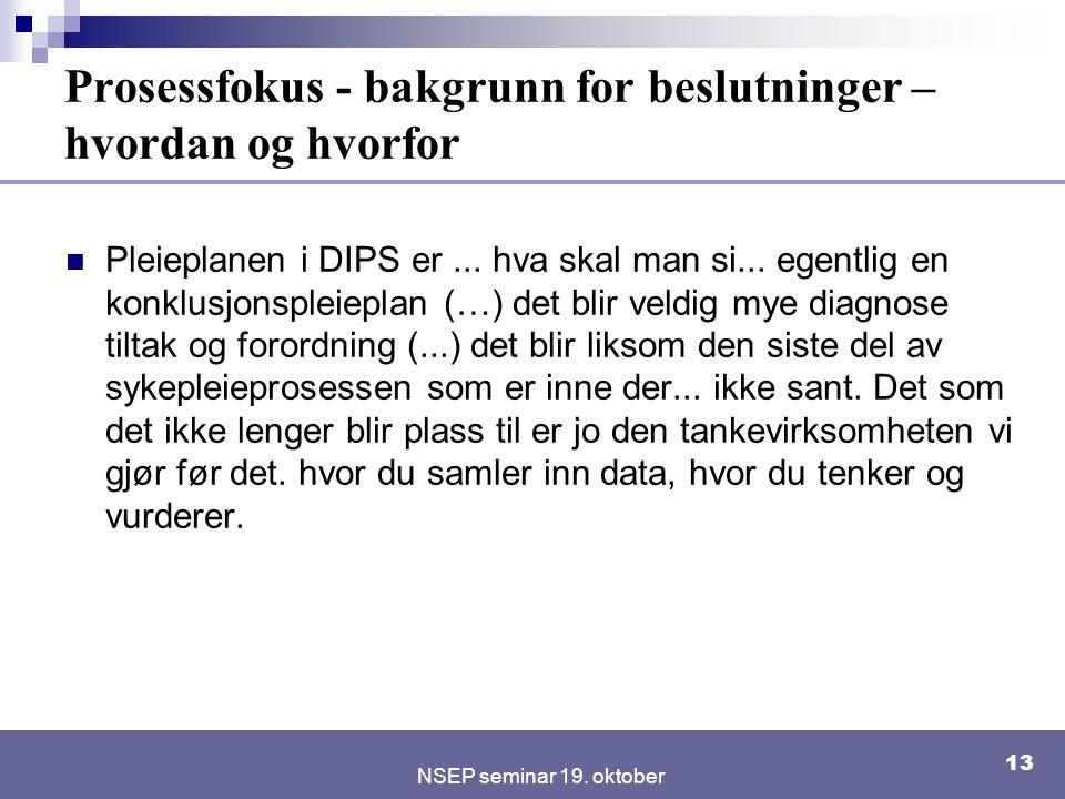 NSEP seminar 19. oktober 13 Prosessfokus - bakgrunn for beslutninger – hvordan og hvorfor Pleieplanen i DIPS er... hva skal man si... egentlig en konk