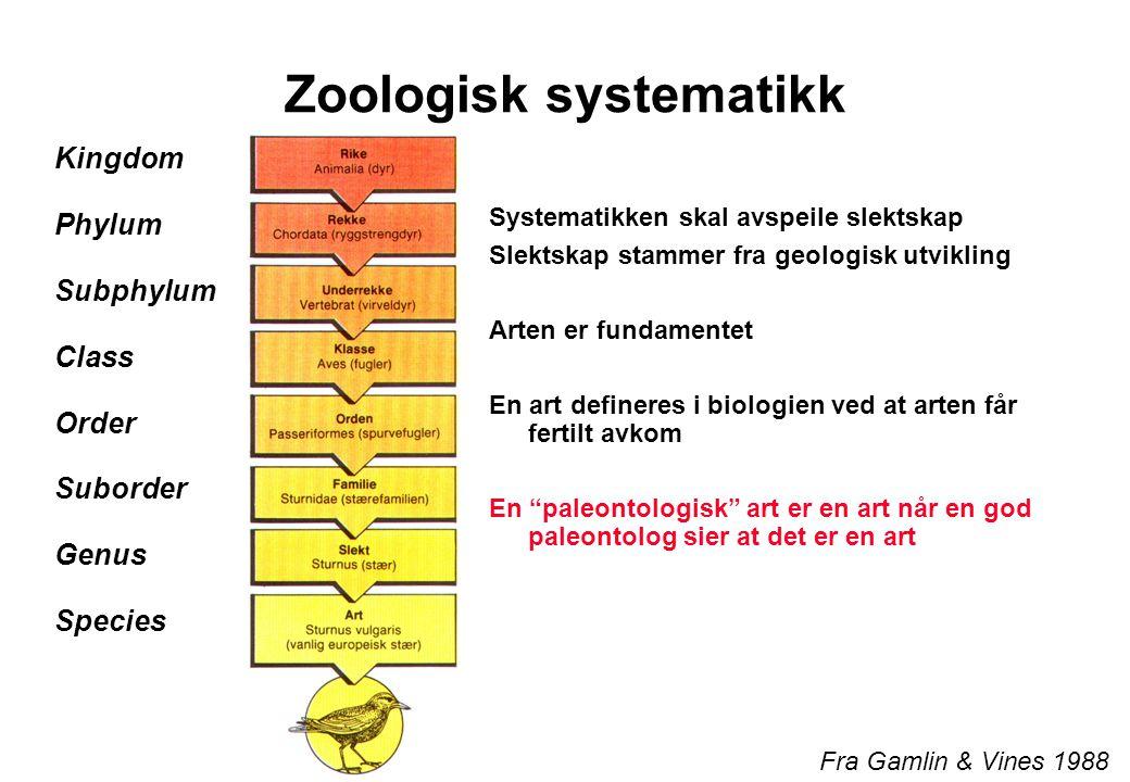 Zoologisk systematikk Kingdom Phylum Subphylum Class Order Suborder Genus Species Systematikken skal avspeile slektskap Slektskap stammer fra geologisk utvikling Arten er fundamentet En art defineres i biologien ved at arten får fertilt avkom En paleontologisk art er en art når en god paleontolog sier at det er en art Fra Gamlin & Vines 1988