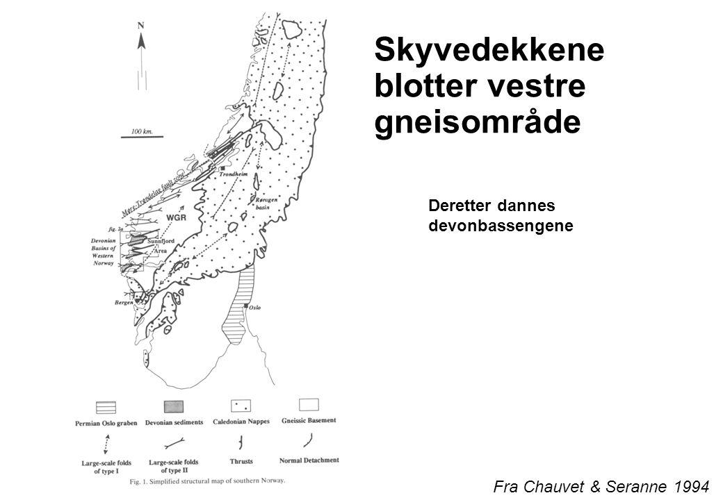 Gneis, metamorfiserte og knadde bergarter Fra Paleontologisk Museum, Oslo