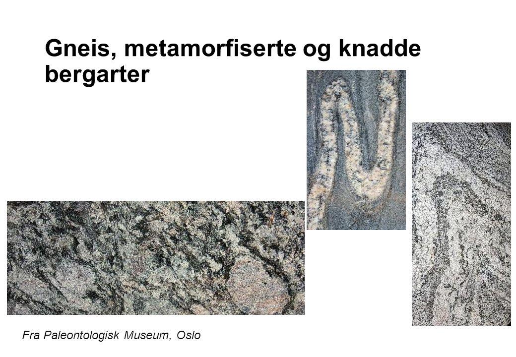 Norges geologiske undersøkelses bergrunnskart over Norge Malmforekomster, særlig sulfider, finnes langs skyvedekkene  I dag skjer mineralisering på midthavsryggene hos black smokers