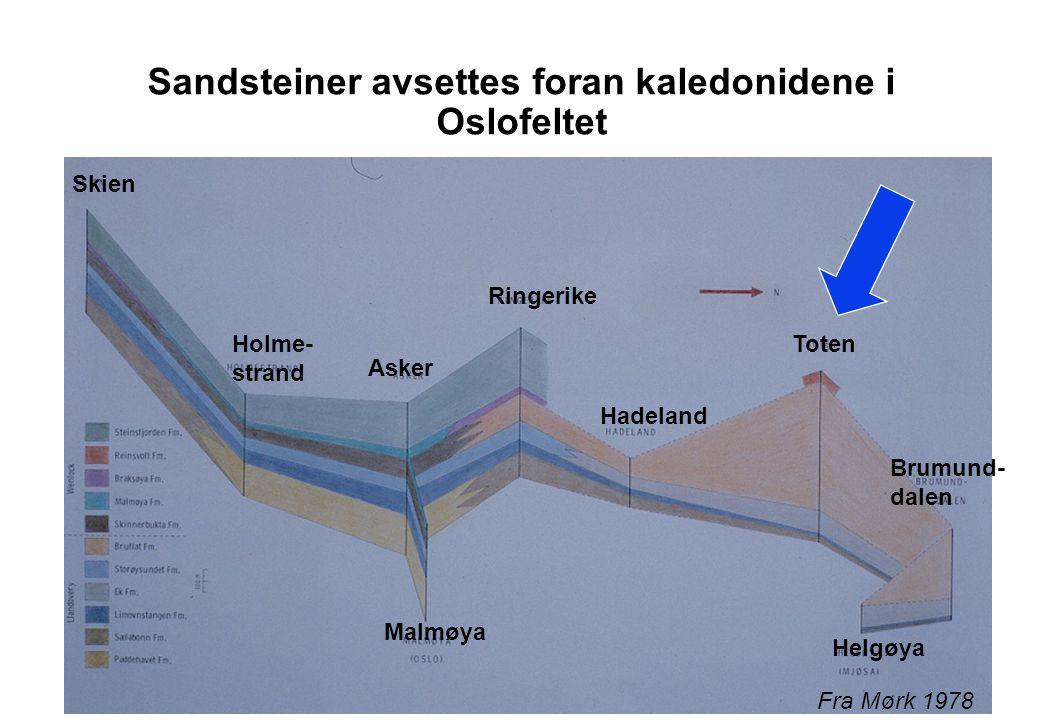 Ringerikegruppen Røde sandsteiner - Kolsås Foto A. Mørk