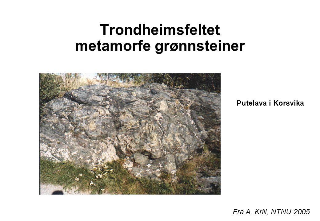 Faunaprovinser Hovingruppens sedimenter i Trøndelag som er fra tidligordovicium har brachiopoder, trilobitter og konodonter av nordafrikansk type I silur får vi kosmopolitt fossilsamfunn  Iapetus er blitt et felleshav