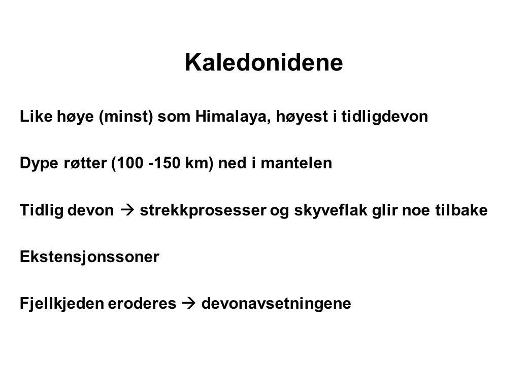 Fra Skjeseth 1974 Norske devonbasseng Røragen Trondheims-leia Vestlandets devonfelter Hornelen Solund Kvamshesten Håstein
