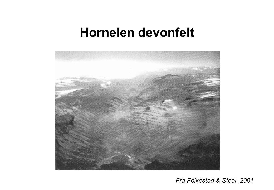 Fra Steel et al. 1985 25 x 6 km 5000-6000 km thick Lignende sediment og avsetningstype som Hornelen