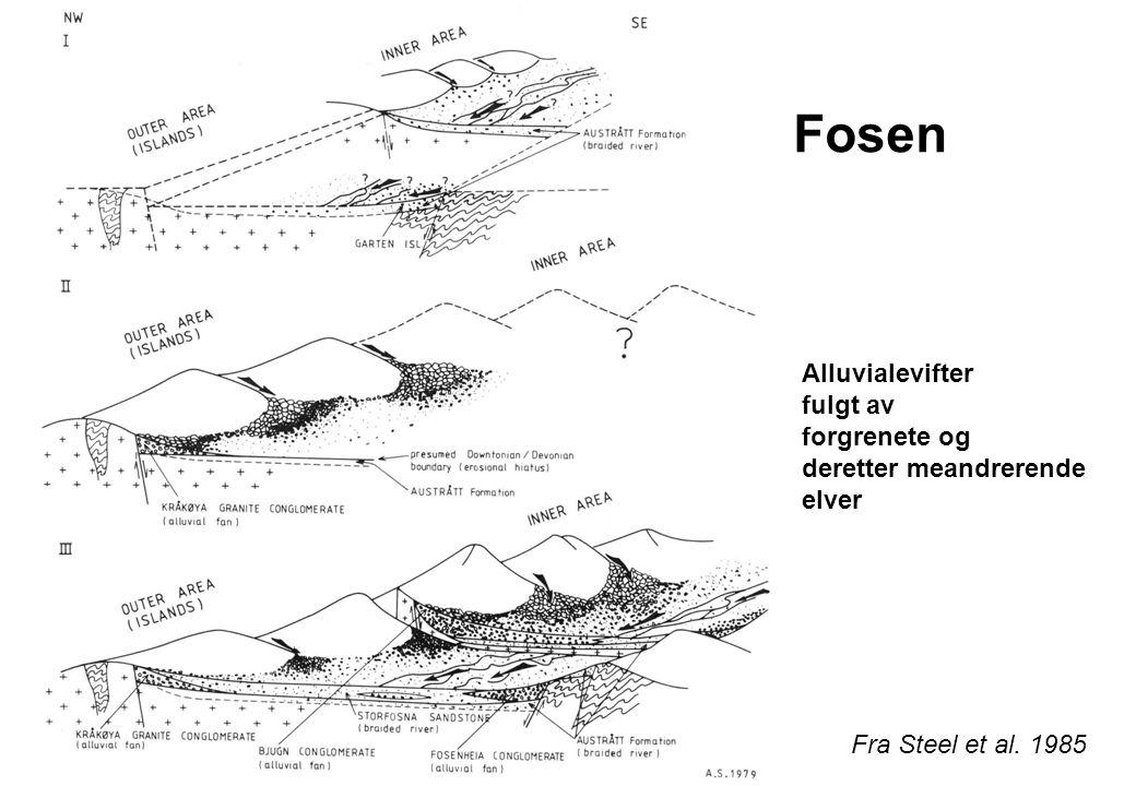 Røragen Fra Steel et al. 1985 6 x 2 km 1200 m kgl og sst Sørover migrerende facies