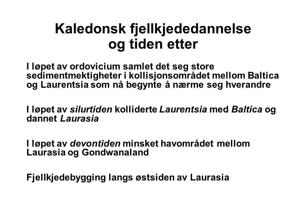 Kontinentenes vandring fra kambrium til devon Fra NGF Norges geologi in prep.