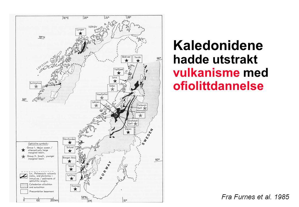 Ofiolittkompleks – fossil havbunn Fragmenter av havbunnskorpe som ble skjøvet på land under fjellkjededannelse Disse ble dannet på overgangen mellom kambrium og ordovicium Fra NGF Norges geologi in prep.