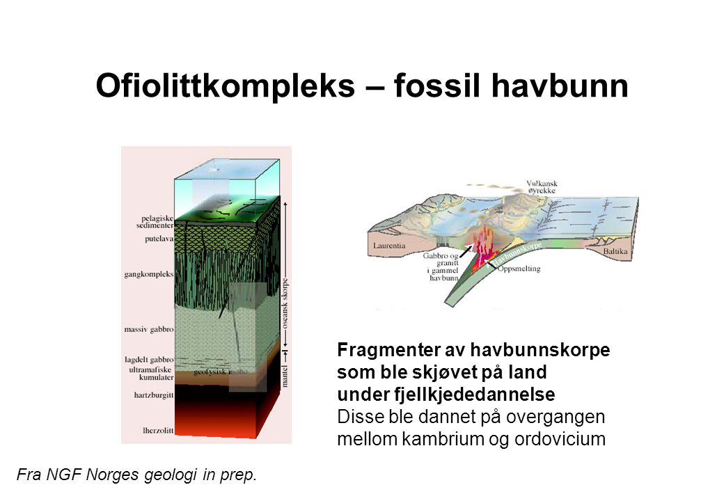 Leka (N-Trøndelag) Mantelbergarter, Peridotitt – jordas vanligste bergart.
