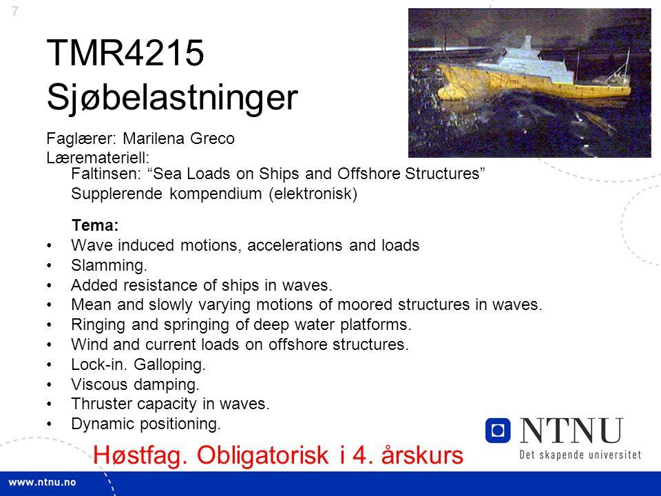 6 Fag – Marin hydrodynamikk TMR4215 Sjøbelastninger - Høst – Obligatorisk TMR4235 Sjøbelastningsstatistikk – Høst TMR4217 Hydrodynamikk for hurtiggåen
