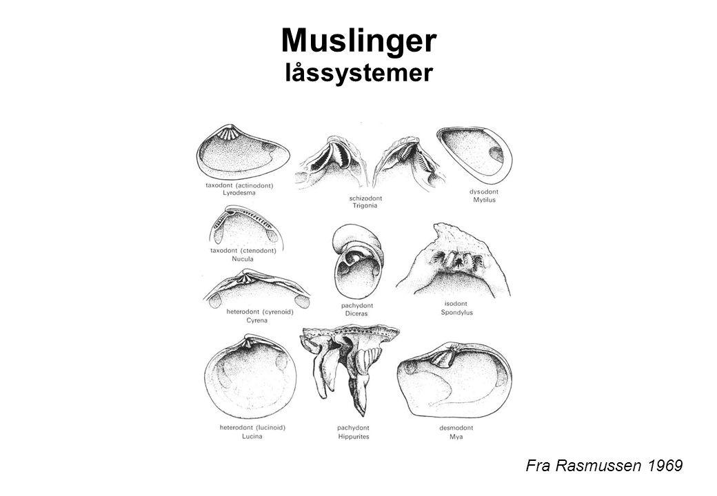 Muslinger låssystemer Fra Rasmussen 1969